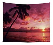 Palms Against Pink Sunset Tapestry