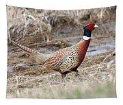Pheasant Tapestry