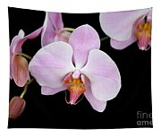 Pink Orchid Vii Tapestry
