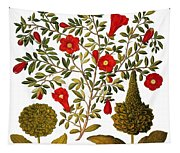 Pomegranate, 1613 Tapestry