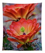 Pretty Little Claret Cup  Tapestry