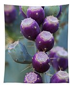 Prickly Pear Fruit  Tapestry