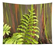Rainbow Eucalyptus And Fern Tapestry