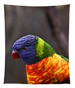 Rainbow Lorikeet Tapestry