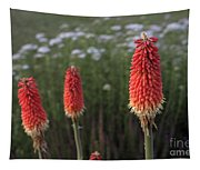 Red Hot Pokers Tapestry