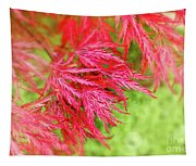 Red Maple Leaves Tapestry