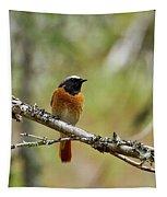 Redstart Tapestry