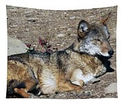 Resting Wolf Tapestry