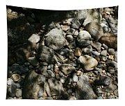 River Stones Tapestry