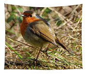 Robin In Hedgerow Tapestry
