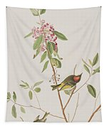 Ruby Crowned Wren Tapestry