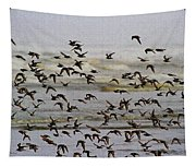 Sand Pipers In Flight Tapestry