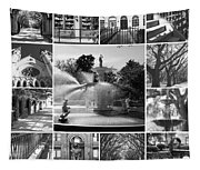 Savannah Collage Black And White Tapestry