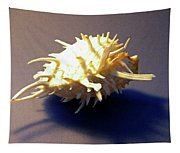 Seashell Spondylus Americanus Tapestry