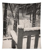 Snow Covered Benches Tapestry