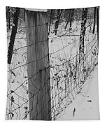 Snow Fence Tapestry