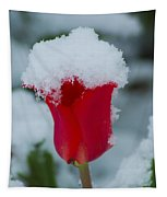 Snowy Red Riding Hood Tapestry