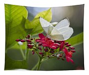 Southern White Butterfly  Tapestry