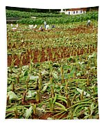 Taro Field Tapestry