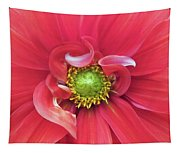 The Dahlia Tapestry