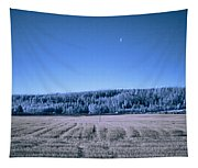 The Field Tapestry