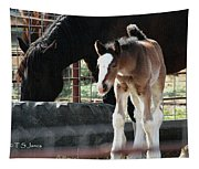 The Flying Colt With The Big White Feet Tapestry