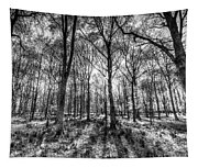 The Monochrome Forest Tapestry