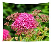 Tiny Pink Spirea Flowers Tapestry