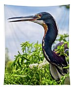 Tri-colored Heron Tapestry