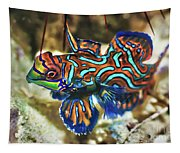 Tropical Fish Mandarinfish Tapestry