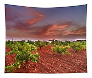 Vineyards At Sunset Tapestry