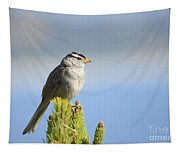 White-crowned Sparrow Tapestry