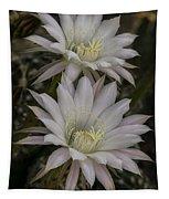 White Echinopsis Tapestry