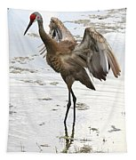 Winging It Tapestry