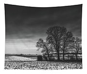 Winter Fields Tapestry