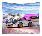Wizz Air Airbus A321 Tapestry