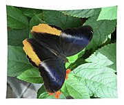 Yellow-edged Giant Owl Butterfly #6 Tapestry