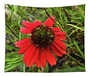 10-27-16--1982 Echinacea Cheyenne Spirit Don't Drop The Crystal Ball Tapestry