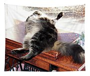 Maine Coon Cat Tapestry