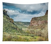 10901 Owyhee Canyon Tapestry