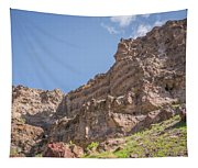 10902 Owyhee River Canyon Tapestry