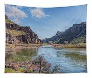 10905 Oregons Owyhee River   Tapestry