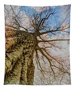 10913 I Am Groot Tapestry