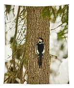 Great Spotted Woodpecker Tapestry
