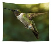 Ruby-throated Hummingbird Tapestry