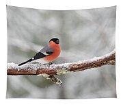 Eurasian Bullfinch In Winter Tapestry