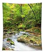 1266 Great Smoky Mountain National Park Tapestry