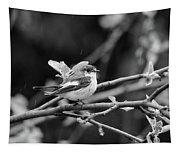 European Pied Flycatcher Tapestry