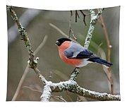 Eurasian Bullfinch Tapestry