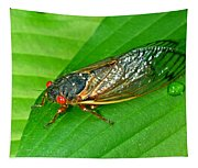 17 Year Periodical Cicada Tapestry